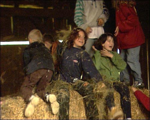 Großstadtkinder auf dem Schulbauernhof