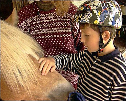 Kinder - speziell autistische - bauen schnell eine Bindung zu dem Pferd auf und haben so Spaß an der Therapie