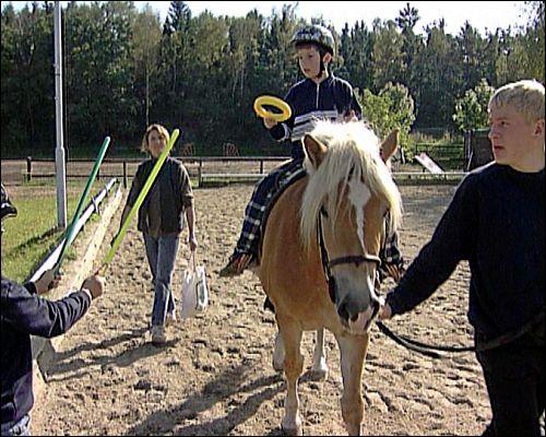 Für das Heilpädagogische Reiten muss das Pferd einen gutmütigen Charakter und eine Dressurausbildung haben