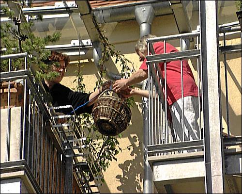 Nachbarschaftshilfe von Balkon zu Balkon