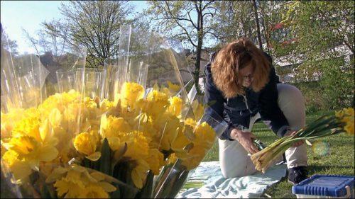 Pfarrerin Irene Stooß-Heinzel legt eine Ostersonne aus Blumen - als Sinnbild der Auferstehung