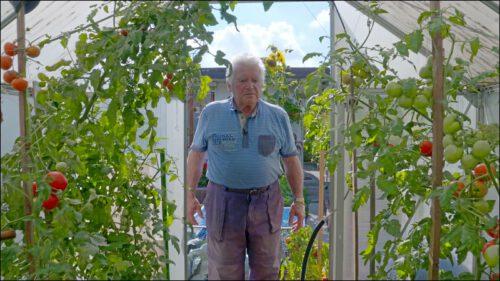 Gottfried Sparber bewirtschaftet mit seiner Frau eine 400 qm große Laube im Kleingartenverein Waldfrieden. Seit knapp 25 Jahren liegt der Schwerpunkt bei ihm auf Obst und Gemüse.