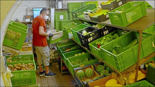 Abokisten haben während des Corona-Lockdowns viele neue Abonnenten gewonnen. Per Mausklick erhält man seine individuelle Bio-Gemüsekiste nach Hause geliefert.